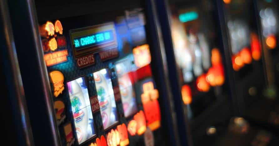 Zagraj w GO Roar do 2021 roku dzięki zupełnie nowym tytułom automatów